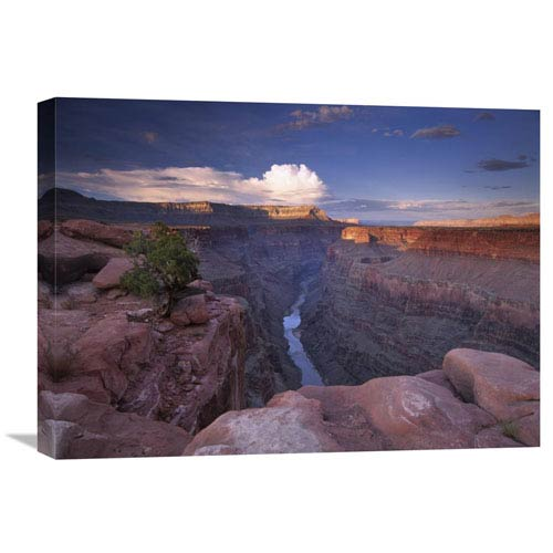Global Gallery Colorado River From Toroweap Overlook, Grand Canyon National Park, Arizona By Tim Fitzharris, 18 X 24-Inch