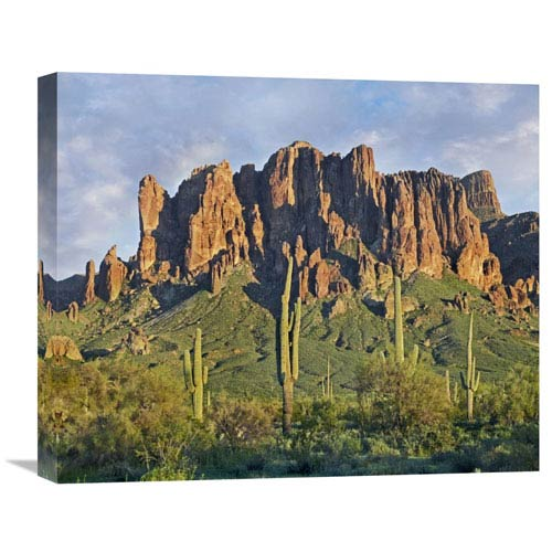 Global Gallery Saguaro Cacti And Superstition Mountains, Lost Dutchman State Park, Arizona By Tim Fitzharris, 18 X 22-Inch