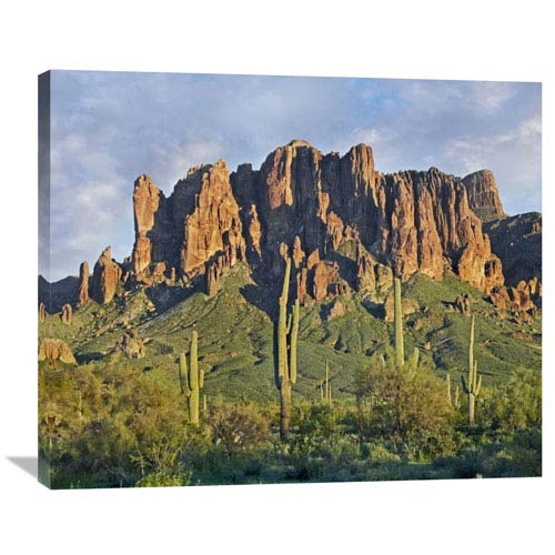 Global Gallery Saguaro Cacti And Superstition Mountains, Lost Dutchman State Park, Arizona By Tim Fitzharris, 29 X 36-Inch