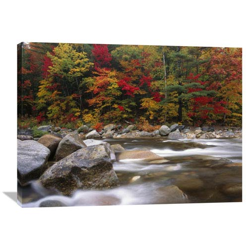 Global Gallery Wild River In Eastern Hardwood Forest, White Mountains National Forest, Maine By Tim Fitzharris, 30 X 40-Inch