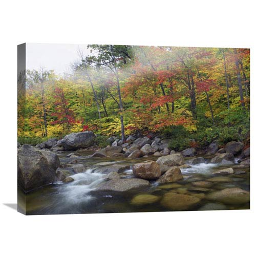 Global Gallery Swift River Flowing Through Fall Colored Forest, White Mountains National Forest, New Hampshire By Tim