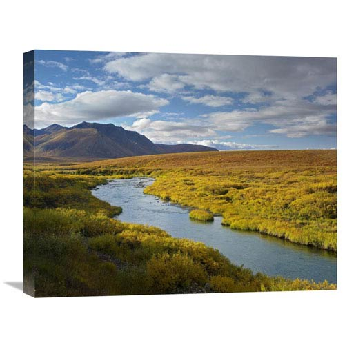 Global Gallery North Klondike River Flowing Through Tundra Beneath The Ogilvie Mountains, Yukon Territory, Canada By Tim