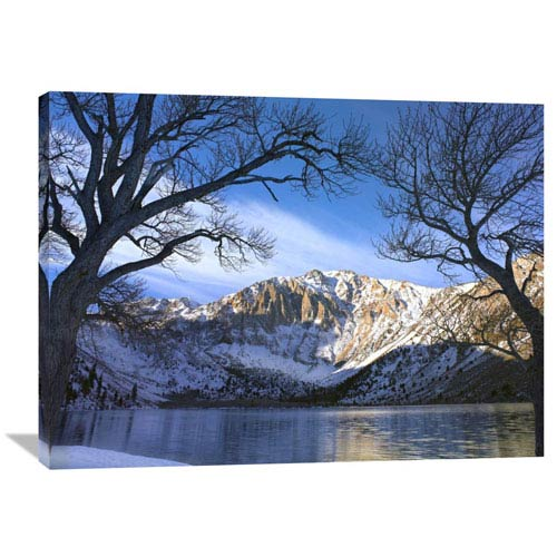 Laurel Mountain And Convict Lake Framed By Barren Trees In Winter, Eastern Sierra Nevada, California By Tim Fitzharris, 30 X