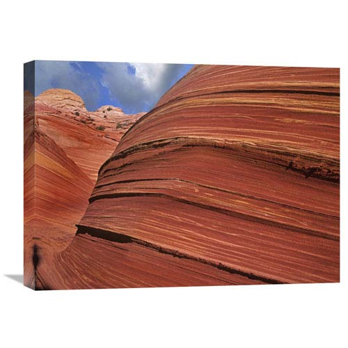 Global Gallery Detail Of The Wave, A Navajo Sandstone Formation In Paria Canyon Vermilion Cliffs Wilderness, Arizona By Tim