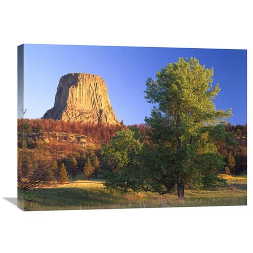 Global Gallery Devils Tower National Monument Showing Famous Basalt Tower, Sacred Site For Native Americans, Wyoming By Tim