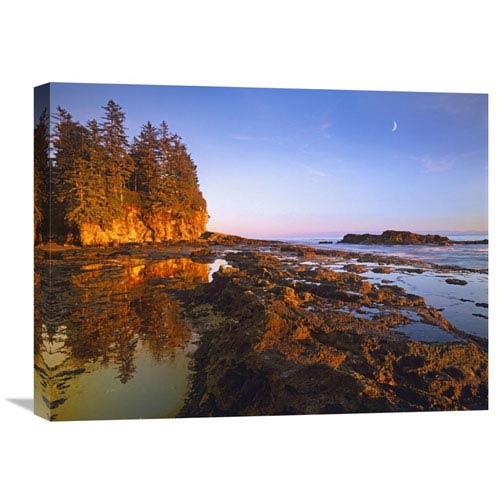 Global Gallery Tidepools Exposed At Low Tide, Botanical Beach, Juan De Fuca Provincial Park, Vancouver Island, British