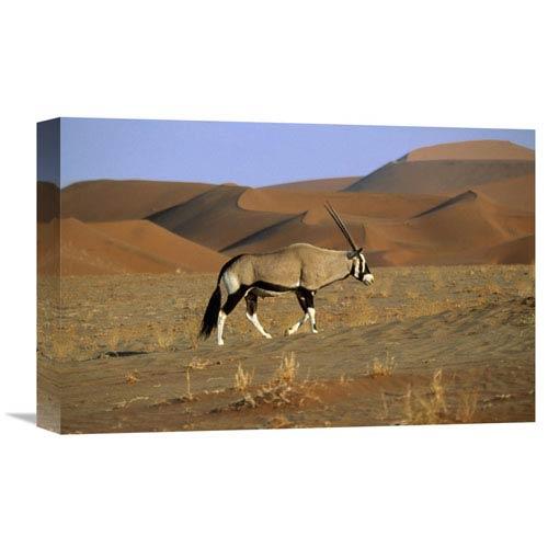 Global Gallery Gemsbok Walking Across Dunes, Sossusvlei, Namib Naukluft National Park, Namibia By Rob Reijnen, 12 X 18-Inch