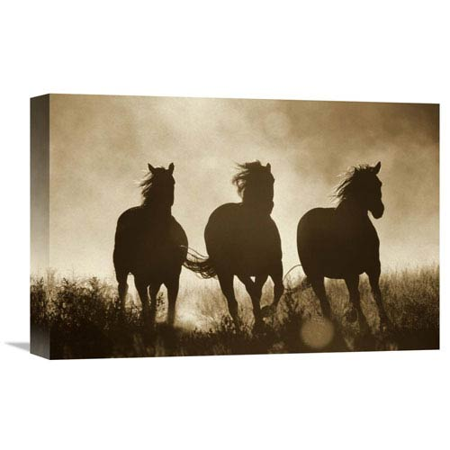 Global Gallery Domestic Horse Trio Running At Sunset, Oregon By Konrad Wothe, 12 X 18-Inch Wall Art