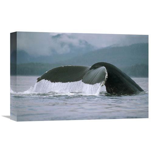 Global Gallery Humpback Whale Tail, Alaska By Flip Nicklin, 12 X 18-Inch Wall Art