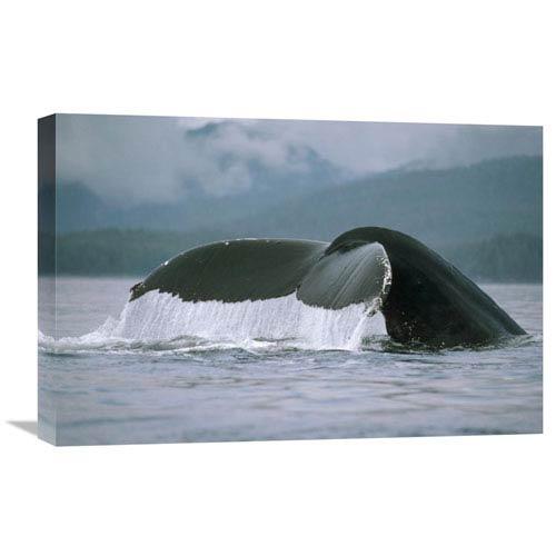 Global Gallery Humpback Whale Tail, Alaska By Flip Nicklin, 16 X 24-Inch Wall Art