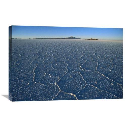 Global Gallery Ancient Hexagonal Crystallization Fissures In Salar De Uyuni Salt Pan, Bolivia By Tui De Roy, 20 X 30-Inch