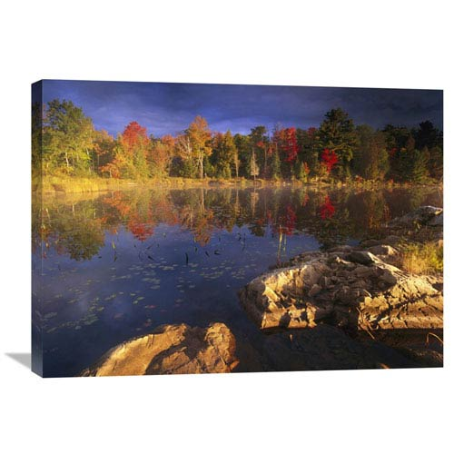 Global Gallery Lang Lake, Fall Colors, Ontario, Canada By Tim Fitzharris, 24 X 32-Inch Wall Art