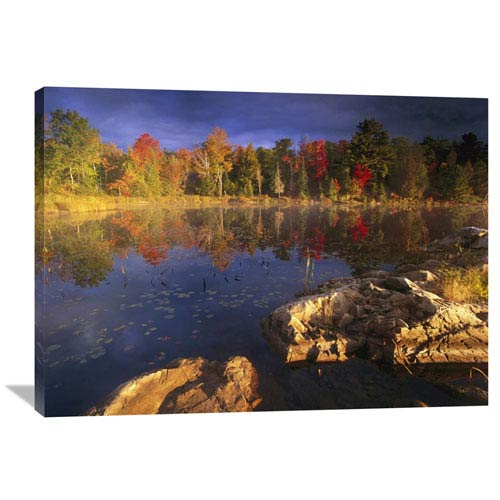 Global Gallery Lang Lake, Fall Colors, Ontario, Canada By Tim Fitzharris, 30 X 40-Inch Wall Art