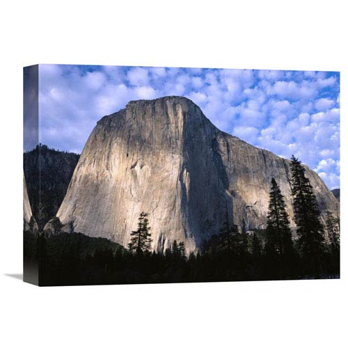 Global Gallery El Capitan Rising Over The Forest, Yosemite National Park, California By Tim Fitzharris, 12 X 16-Inch Wall Art