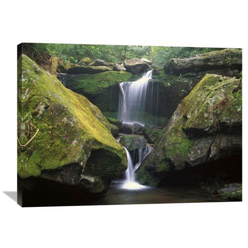 Global Gallery Cascade Near Grotto Falls, Great Smoky Mountains National Park, Tennessee By Tim Fitzharris, 30 X 40-Inch Wall