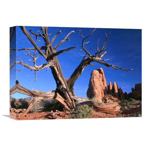 Global Gallery Snag At Fiery Furnace Labyrinth, Arches National Park, Utah By Tim Fitzharris, 12 X 16-Inch Wall Art