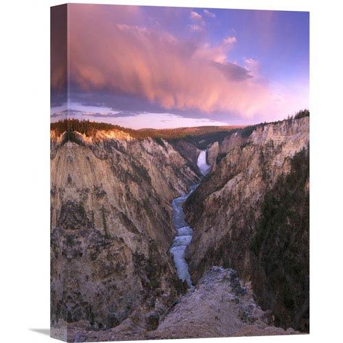 Global Gallery Lower Yellowstone Falls, Yellowstone National Park, Wyoming By Tim Fitzharris, 16 X 12-Inch Wall Art