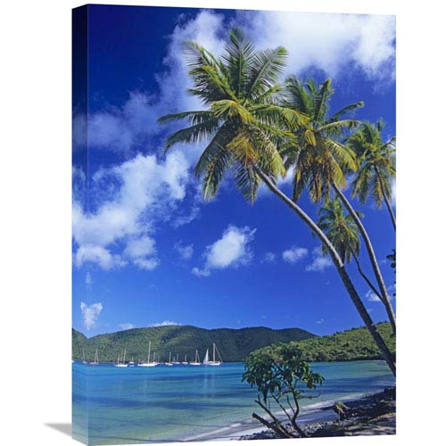 Global Gallery Palm Trees At Maho Bay, Virgin Islands By Tim Fitzharris, 24 X 18-Inch Wall Art