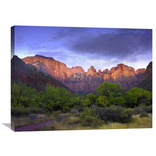 Global Gallery Towers Of The Virgin, Zion National Park, Utah By Tim Fitzharris, 24 X 32-Inch Wall Art