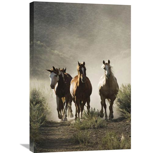 Global Gallery Horse Group Of Four Approaching Camera, Oregon By Konrad Wothe, 30 X 20-Inch Wall Art