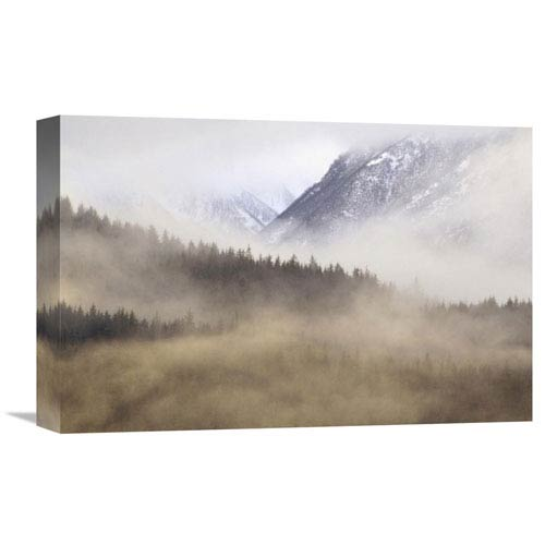Global Gallery Fog In Old Growth Forest, Chilkat River Wilderness, Alaska By Gerry Ellis, 12 X 18-Inch Wall Art