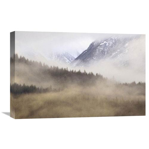 Global Gallery Fog In Old Growth Forest, Chilkat River Wilderness, Alaska By Gerry Ellis, 16 X 24-Inch Wall Art