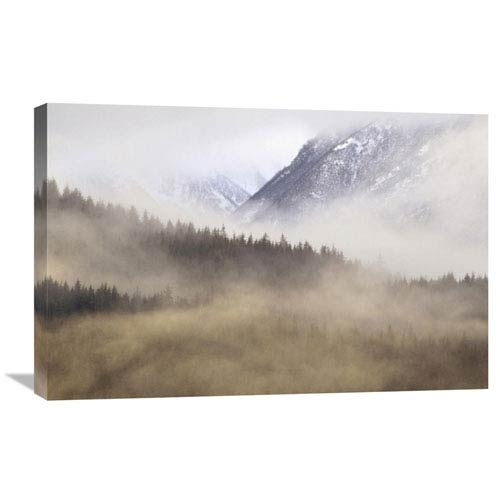 Global Gallery Fog In Old Growth Forest, Chilkat River Wilderness, Alaska By Gerry Ellis, 20 X 30-Inch Wall Art