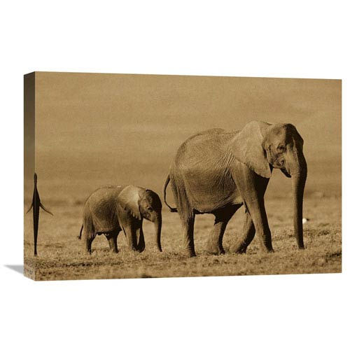 Global Gallery African Elephant Mother And Calf, Kenya By Tim Fitzharris, 16 X 24-Inch Wall Art