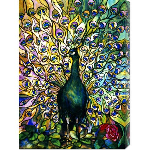 Global Gallery Fine Peacock: 21.4 x 30 Canvas Giclees, Wall Art