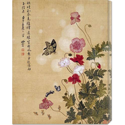 Global Gallery Corn Poppy and Butterflies by Ma Yuanyu: 23.1 x 30 Canvas Giclees, Wall Art