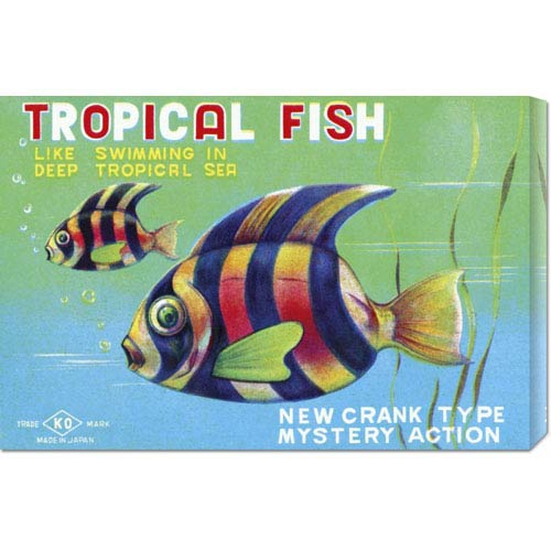 Global Gallery Tropical Fish: 16 x 24 Canvas Giclees, Wall Art