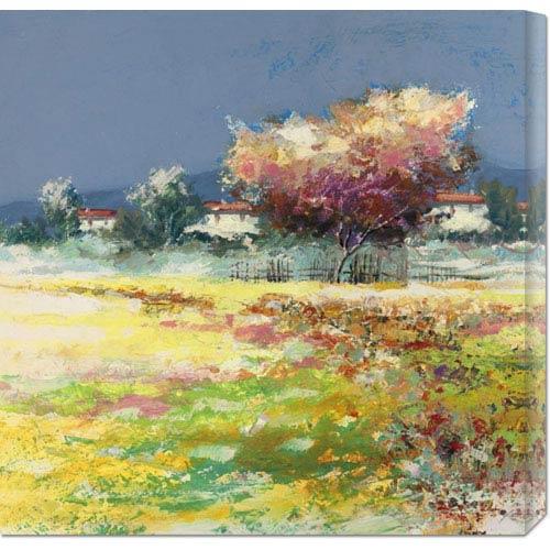 Global Gallery Albero Nel Prato by Luigi Florio: 24 x 24 Canvas Giclees, Wall Art