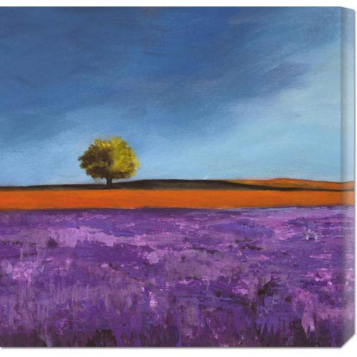 Global Gallery Field of Lavender by Philip Bloom: 24 x 24 Canvas Giclees, Wall Art