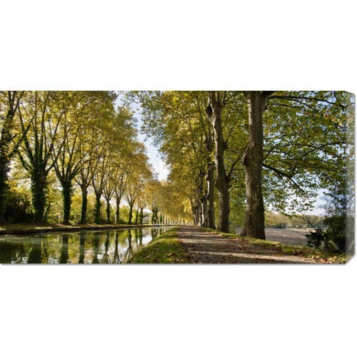 Global Gallery Trees Growing by River in Park by Howard Kingsnorth: 36 x 18 Canvas Giclees, Wall Art