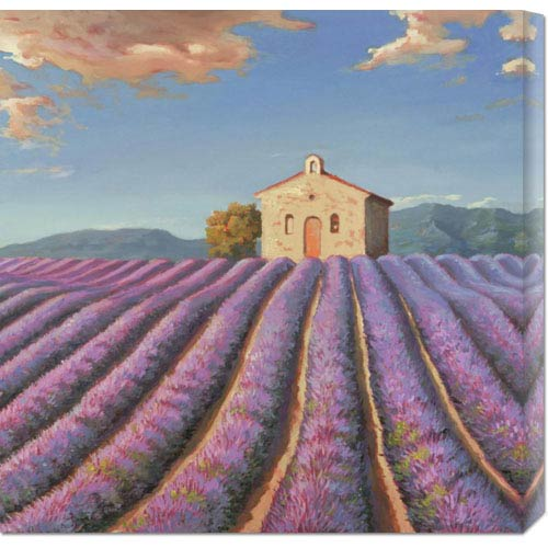 Global Gallery Campi di Lavanda by Adriano Galasso: 24 x 24 Canvas Giclees, Wall Art
