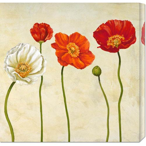 Global Gallery Coquelicots by Cynthia Ann: 24 x 24 Canvas Giclees, Wall Art