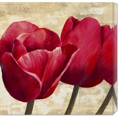 Global Gallery Red Tulips by Cynthia Ann: 24 x 24 Canvas Giclees, Wall Art