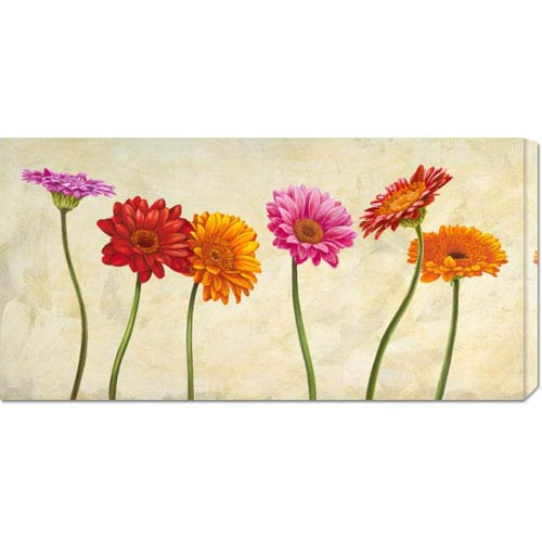 Global Gallery Gerberas by Cynthia Ann: 36 x 18 Canvas Giclees, Wall Art