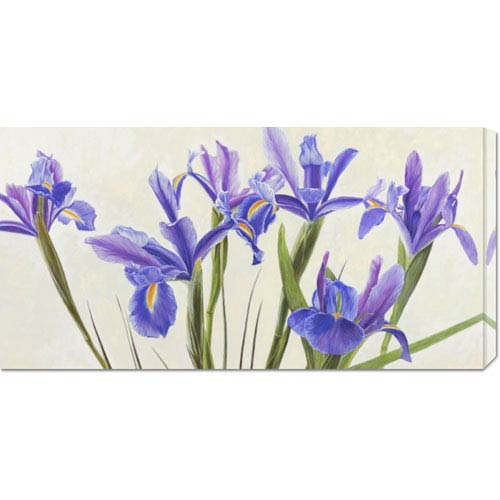 Global Gallery Iris by Elena Dolci: 36 x 18 Canvas Giclees, Wall Art