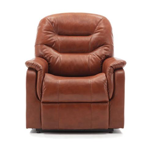 Palmer Caramel Lift Chair