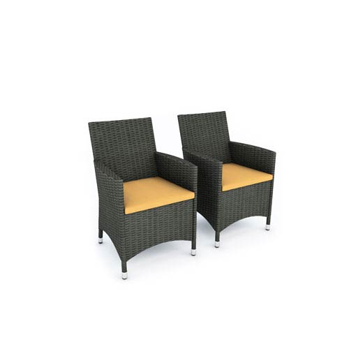 Sonax Cascade River Rock Black Weave Two Chair Set