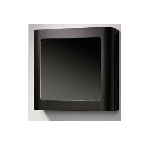 Aeri Ebony 21.75-Inch Single Door Medicine Cabinet w/Mirror Door & Two Shelves