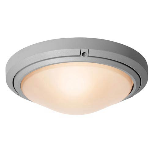 Access Lighting Oceanus Satin Nickel Two-Light Outdoor Flush Mount with Frosted Glass
