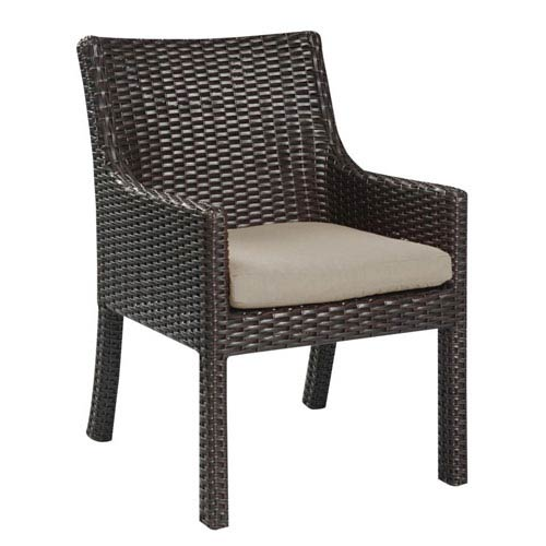 Selby Arm Dining Chair Sunbrella, Set of 2