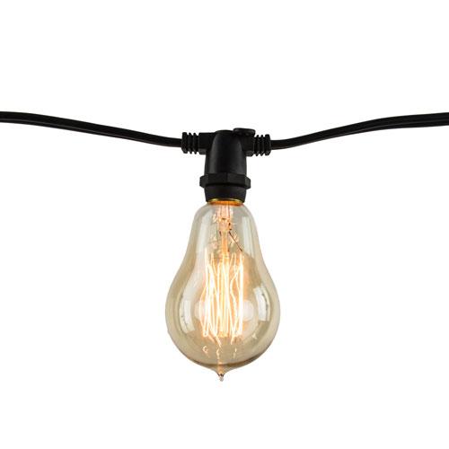 Black 14-Foot 10-Light A15 E12 Vintage String Light