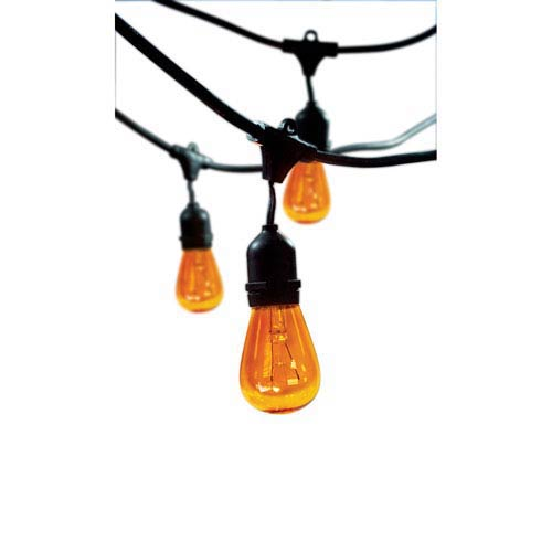Black 48 Ft Outdoor String Light with Amber Bulbs