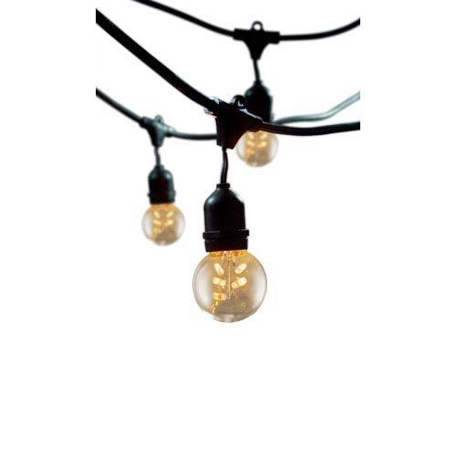 48-Foot Outdoor 15-Light String Light with Starlight G16 Bulbs