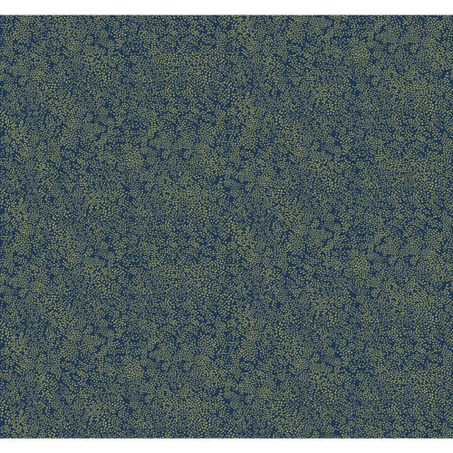 Rifle Paper Co. Gold and Navy Champagne Dots Wallpaper