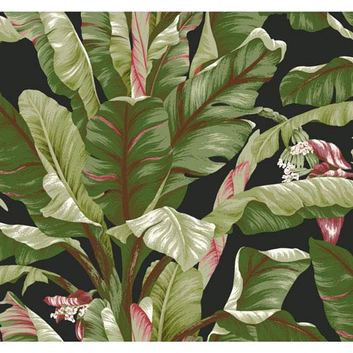 Ashford House Tropics Black and Green Banana Leaf Wallpaper