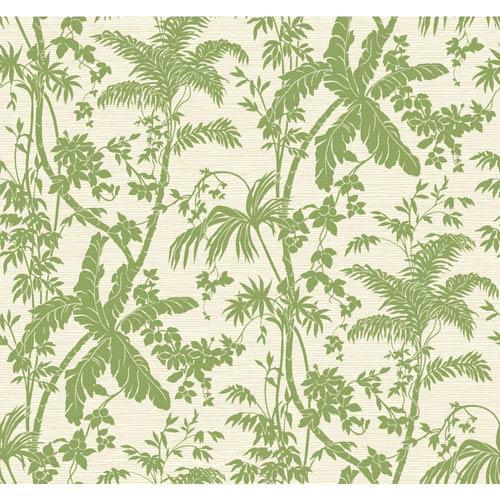 Ashford House Tropics Medium Green and Cream Palm Shadow Wallpaper: Sample Swatch Only